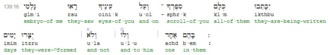 Scripture4All_Psalm_139-16_interlinear